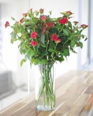 cách cắm hoa hồng tỉ muội đơn giản