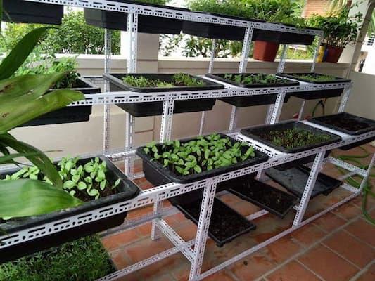 cách làm giàn trồng rau kệ đứng