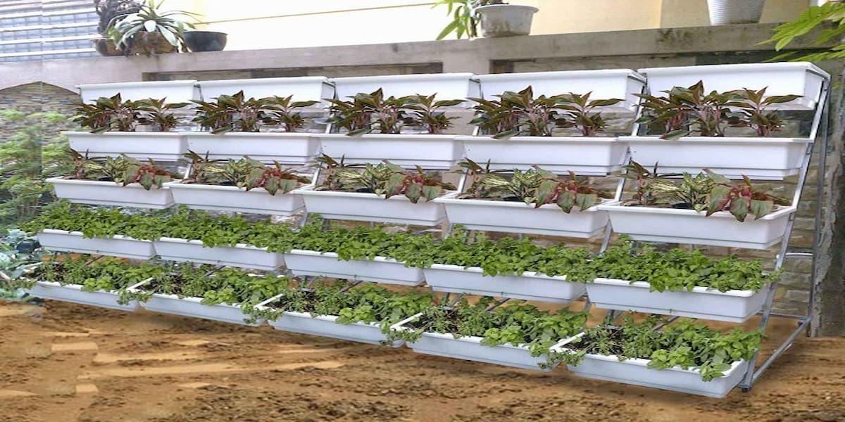 cách làm giàn trồng rau tại nhà đơn giản