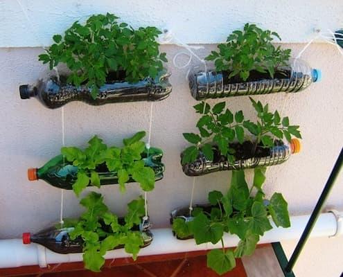 cách làm giàn trồng rau từ chai nhựa