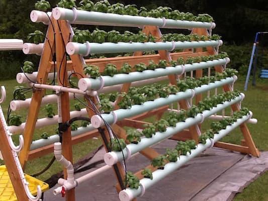 cách làm giàn trồng rau từ ống tre hoặc ống nhựa