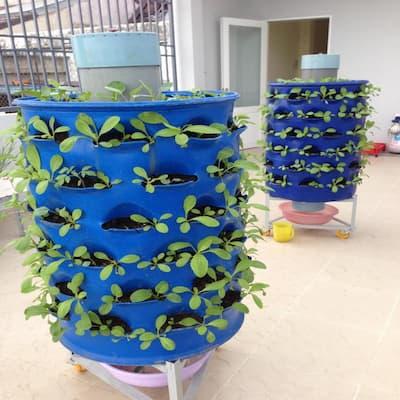 cách làm tháp trồng rau từ thùng nhựa
