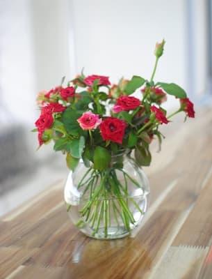 cắm hoa hồng tỉ muội trong lọ