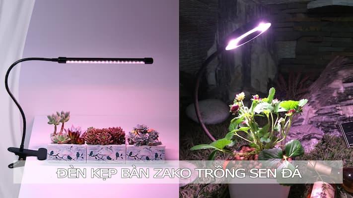 Đèn kẹp bàn zako trồng sen đá