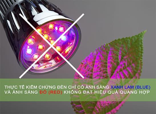 đèn led có ánh sáng xanh và đỏ không hiệu quả quang hợp