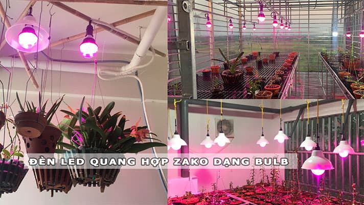 đèn led quang hợp zako dạng bulb