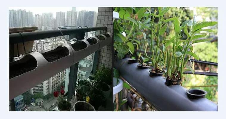 Đục lỗ trên thân ống nhựa hoặc ống tre để trồng rau