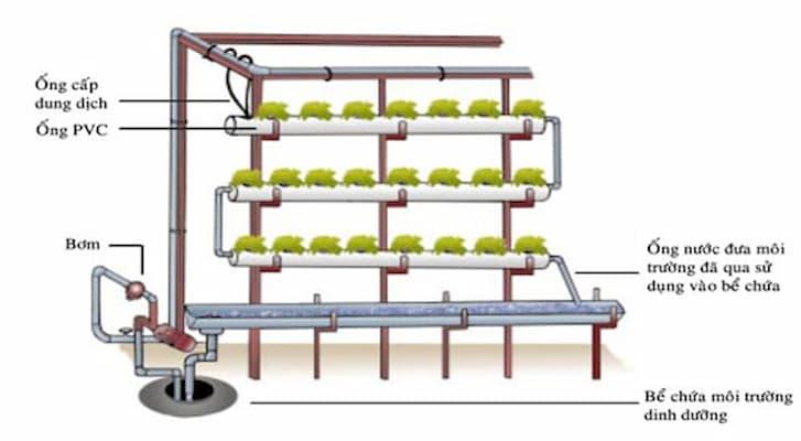 lắp đặt máy bơm nước cho giàn thủy canh hồi lưu